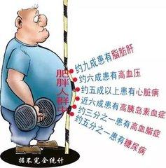 肥胖是II型糖尿病的真凶